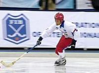 Хоккей с мячом 2009