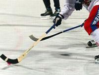 Чемпионат мира по хоккею с мячом 2009