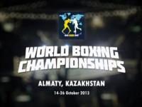 Результаты чемпионата мира по боксу 2013 года